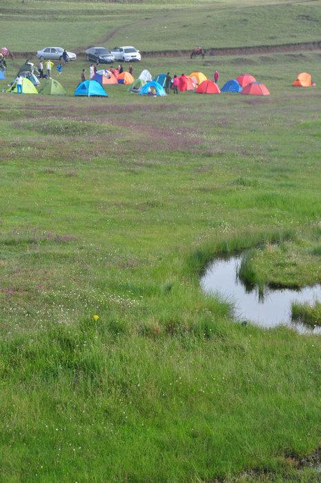 叉沟后向西流入鲁甸县的龙树大河.在云南大山包湿地内,湿地分布点图片